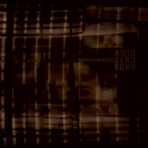 Amid Zero Echo